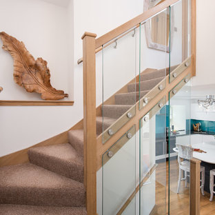 Mid-sized cottage carpeted curved wood railing staircase photo in Other with glass risers