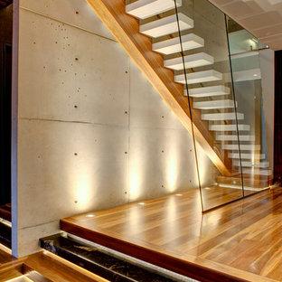 ゴールドコーストの大きいアクリルのコンテンポラリースタイルのおしゃれな直階段の写真