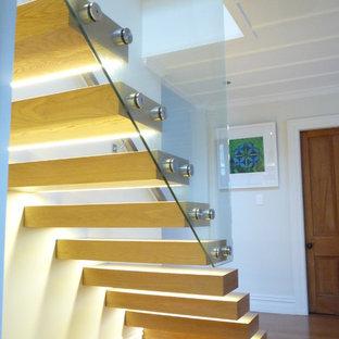 オークランドの中サイズの木のモダンスタイルのおしゃれな階段の写真