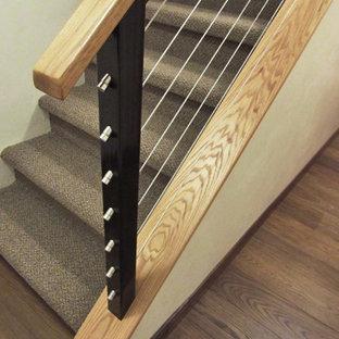 Cette photo montre un petit escalier droit sud-ouest américain avec des marches en moquette et des contremarches en moquette.