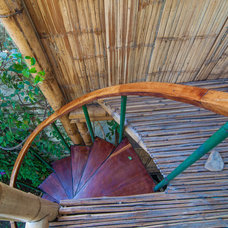 Tropical Staircase by Louise Lakier