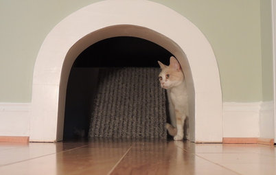 15 Design-Friendly Places to Hide the Cat Litter Box