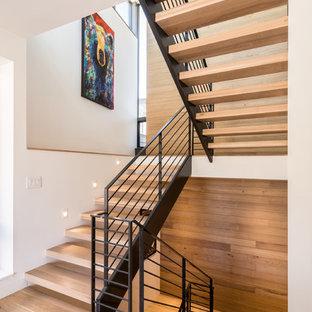 Ispirazione per una scala sospesa design di medie dimensioni con pedata in legno, nessuna alzata e parapetto in cavi
