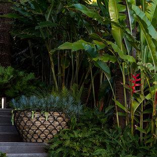 Foto di una grande scala sospesa tropicale con pedata in legno e alzata in legno