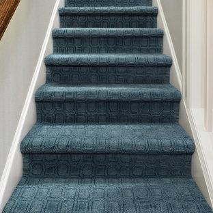ボイシの中くらいのカーペット敷きのトランジショナルスタイルのおしゃれな直階段 (カーペット張りの蹴込み板) の写真