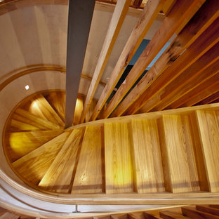 Example of a large trendy wooden curved wood railing staircase design in Auckland with wooden risers