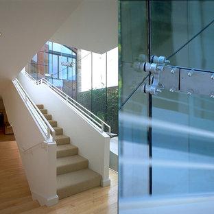 サンディエゴの大きいカーペット敷きのモダンスタイルのおしゃれな直階段 (カーペット張りの蹴込み板、金属の手すり) の写真