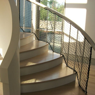 Example of a large trendy curved staircase design in Providence