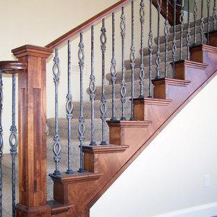Esempio di una scala a rampa dritta classica di medie dimensioni con pedata in moquette e alzata in moquette