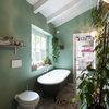 10 piante d appartamento che restano volentieri in ombra - Posso andare in bagno in inglese ...