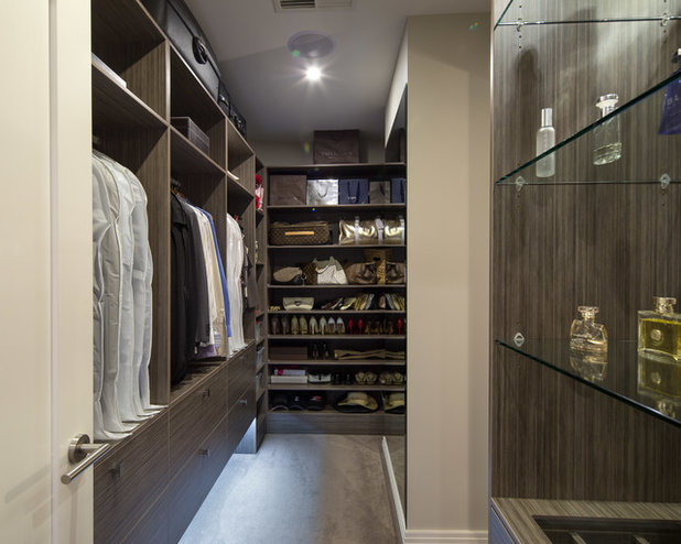 Contemporary Wardrobe by Platinum Fine Homes