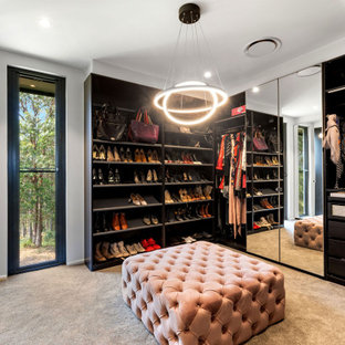 Inspiration for a contemporary women's walk-in wardrobe in Sunshine Coast with open cabinets, dark wood cabinets, carpet and beige floor.