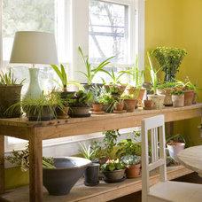 Farmhouse Sunroom by Margaret Carter Interiors