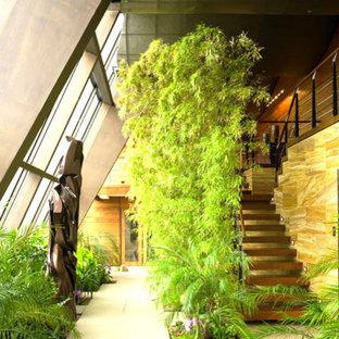 Ispirazione per una grande veranda moderna con parquet scuro, nessun camino e soffitto classico