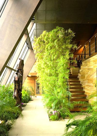 Moderno Veranda by LKM Design