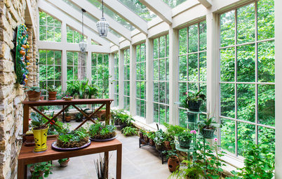 Parla l'Esperto: 7 Modi per Realizzare un Giardino d'Inverno