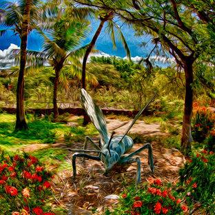 Hawaii - Tropical Garden - Omaste Witkowski