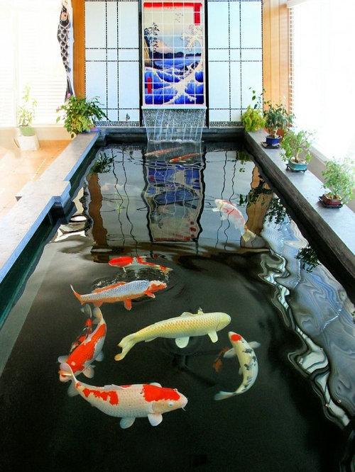 Indoor koi pond home design ideas renovations photos for Indoor pond design