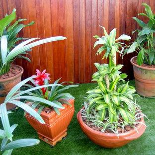 Jardinagem(gardening)