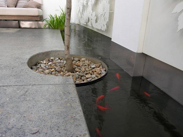 モダン サンルーム by GOODMANORS Pool + Garden