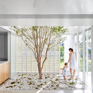 Mid-sized contemporary sunroom in Sydney with concrete floors.