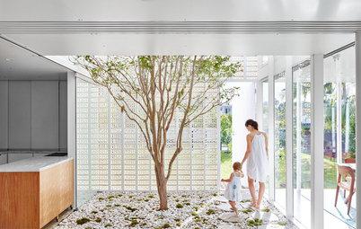 11 questions à se poser avant d'aménager un jardin d'intérieur