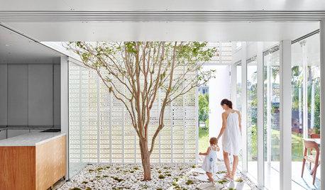 Casas y naturaleza: Los hogares se transforman en jardines