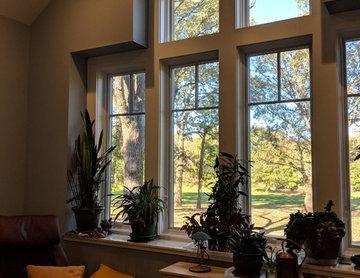 Plant Shelf Window