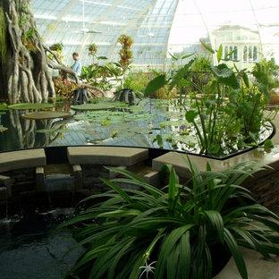 Cette photo montre une très grand véranda exotique avec béton au sol et un plafond en verre.