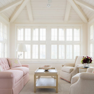 Sunroom - traditional carpeted sunroom idea in Minneapolis with a standard ceiling