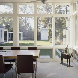 Trendy sunroom photo in Chicago with a standard ceiling