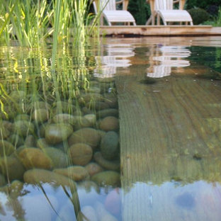 Inspiration for a medium sized contemporary rectangular natural swimming pool in Other with decking.