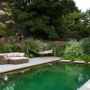 Modelo de piscina natural, clásica, rectangular, en patio trasero, con entablado