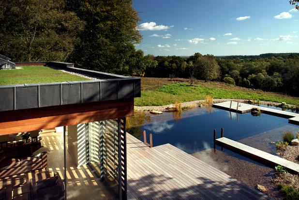 Modern Pool by PAD studio