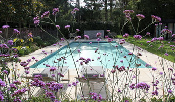 Pool garden in North London