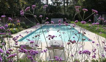 Pool garden in North London