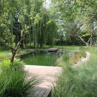Ejemplo de piscina natural, rural, en patio trasero