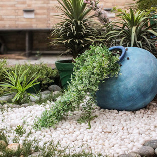 A Traditional Indian Terrace Garden Story