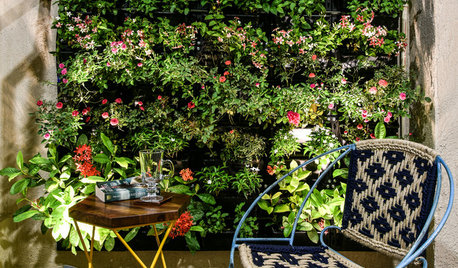 How To Make Your Small Garden Look Bigger