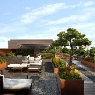 Idéer för en liten modern takterrass, med en vertikal trädgård