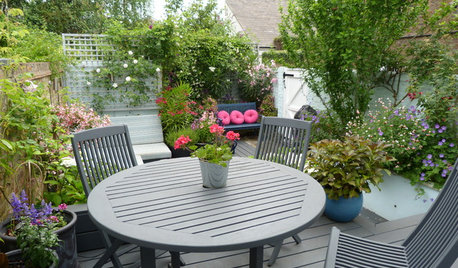 Garden Tour: A Small Courtyard Garden with Year-round Appeal