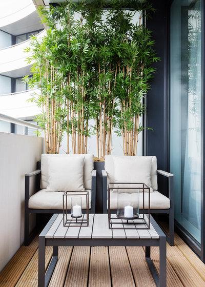 dschungel look auf dem balkon ein indoor trend will nach. Black Bedroom Furniture Sets. Home Design Ideas
