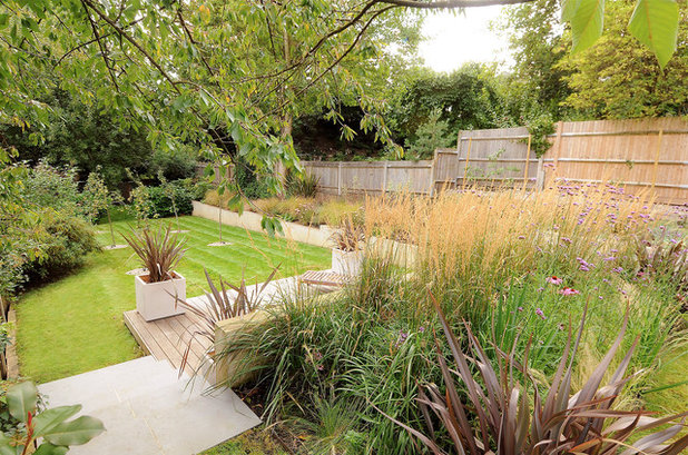 contemporary deck by kate eyre garden design