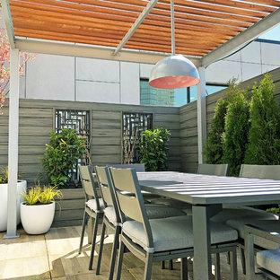 Foto di una terrazza minimal sul tetto e sul tetto con un giardino in vaso e una pergola