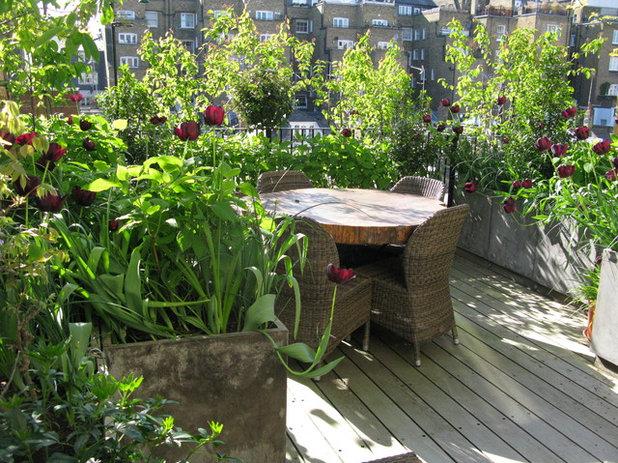Contemporary Terrace & Balcony by The London Gardener Ltd