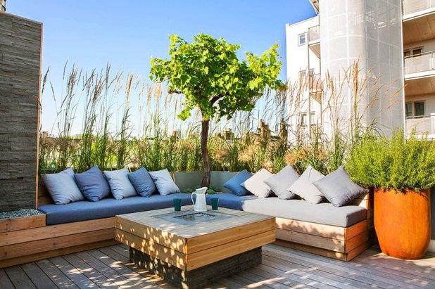 Contemporáneo Terraza y balcón by Adolfo  Harrison Gardens