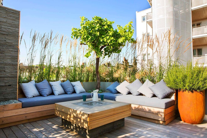 Contemporary Deck by Adolfo  Harrison Gardens