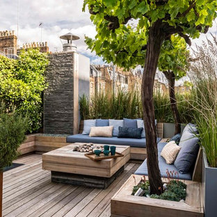 Foto di terrazze e balconi contemporanei sul tetto con un giardino in vaso e nessuna copertura