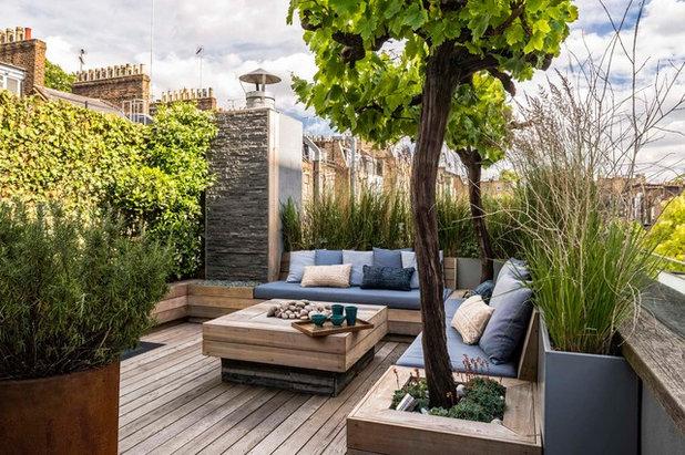 Contemporain Terrasse en Bois by Adolfo  Harrison Gardens
