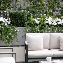 8 Trellis Ideas to Give You Garden Envy